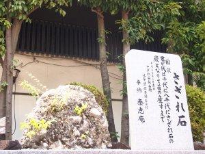 大阪天満宮-さざれ石